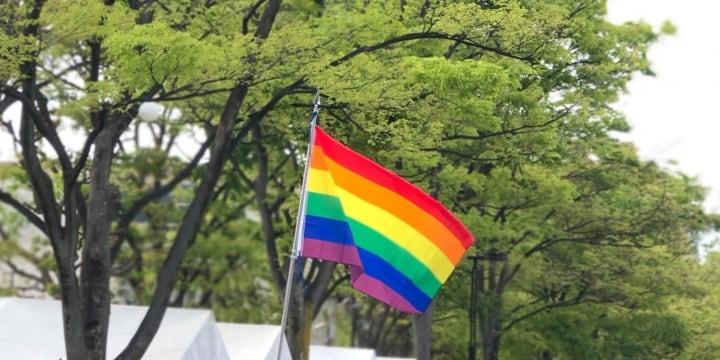 参院選、LGBT政策で各党に「温度差」 同性婚や差別禁止の法制化に乗り気な党、慎重な党は?