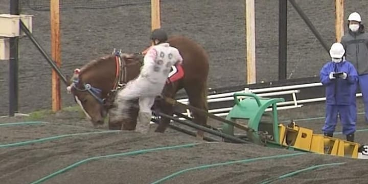 騎手が「馬の顔蹴る」動画が物議、ばんえい競馬「許される行為ではない」と処分