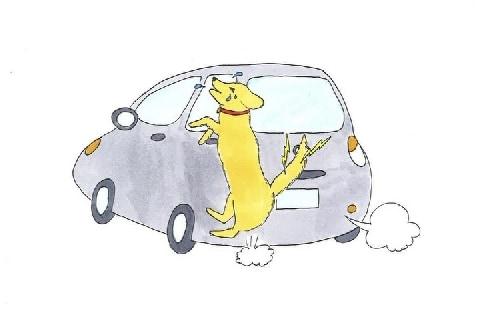 痛いワン!「飼い犬」散歩中、車にシッポをひかれてしまった…治療代を請求できる?