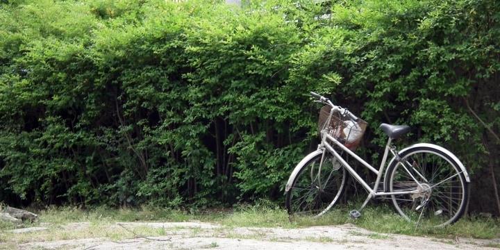 拾った「放置自転車」を修理して3年間使用、警察は注意だけ…犯罪じゃないの?