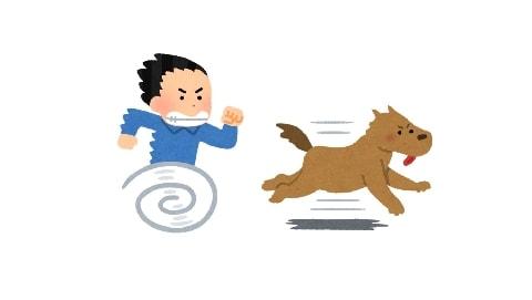 山で出会った「野良犬」、おじさんが追いかけ回して連れ去る…犯罪では?