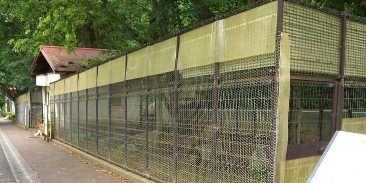 「開園時がピーク」から脱却へ、閉園崖っぷち「盛岡市動物公園」再生プロジェクトが始動