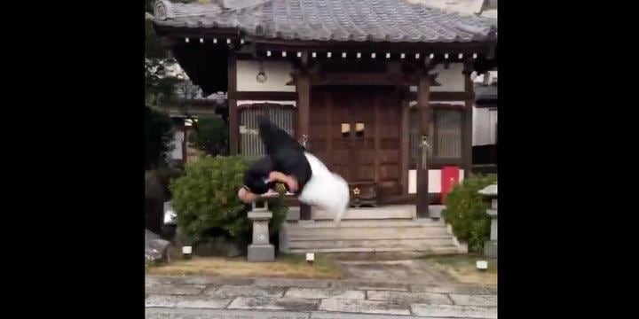 警察動かした「僧衣でできるもん」 福井、運転問題で「衣服規定」なくなる