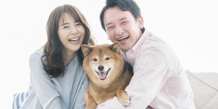 離婚したら「ペット」とも会えない? 愛犬との面会交流はありえるか